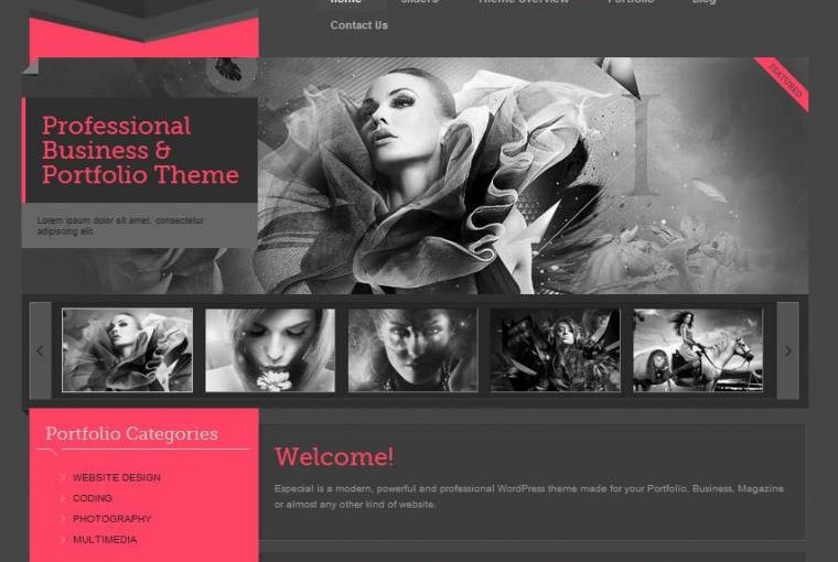 Especial – Business & Portfolio WordPress Theme