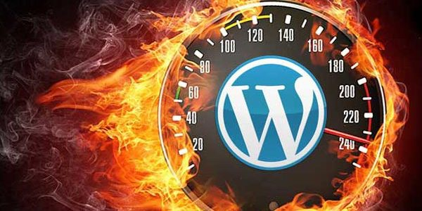 Website Speed